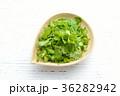 パクチー、香菜、タイ料理、エスニック料理、ハーブ。 36282942