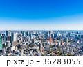 東京 風景 晴れの写真 36283055