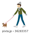 冬 散歩 犬の散歩のイラスト 36283357