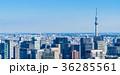 東京スカイツリーと摩天楼 36285561