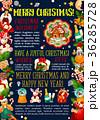 クリスマス グリーティング ベクトルのイラスト 36285728
