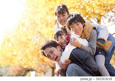 黄葉を楽しむ家族 36291616