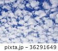 羊雲 高積雲 雲の写真 36291649