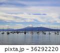 ヨットハーバー 富士山 駿河湾の写真 36292220