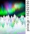 森林 林 森のイラスト 36292590