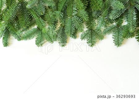 クリスマスガーランド 36293693
