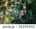 レトロな木の電柱 36295002