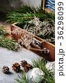クリスマス 飾り モミの写真 36298099