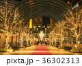 恵比寿ガーデンプレイス クリスマスライトアップ 36302313