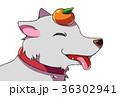 正月 犬 干支のイラスト 36302941