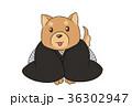 正月 紋付袴 犬のイラスト 36302947