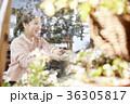 若い女性 若い女 喫茶店の写真 36305817