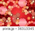 和柄 菊 模様のイラスト 36313345