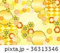 和柄 菊 模様のイラスト 36313346
