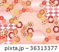 和柄 菊 模様のイラスト 36313377