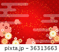 和柄 菊 梅のイラスト 36313663