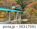 紅葉 久慈川 鉄橋の写真 36317091
