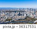 東京 新宿副都心と原宿・青山周辺の町並み 36317531