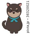 年賀状素材 犬 戌のイラスト 36320021