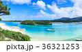 川平湾 石垣島 海の写真 36321253