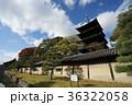 京都 東寺 お寺の写真 36322058