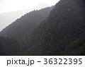 ゲリラ豪雨 36322395