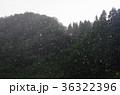 ゲリラ豪雨 36322396