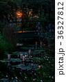 夕暮れの庭 36327812