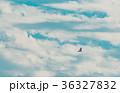 青空のハンター 36327832