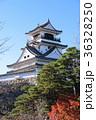 高知城の秋 36328250
