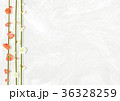梅 白梅 紅梅のイラスト 36328259