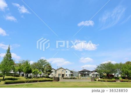 初夏の青空と公園からの風景 36328850
