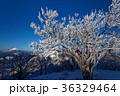 富士山 樹氷 山の写真 36329464