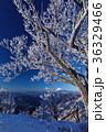 富士山 樹氷 山の写真 36329466