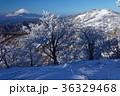 富士山 樹氷 山の写真 36329468
