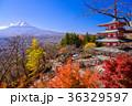 富士山 忠霊塔 浅間神社の写真 36329597