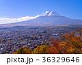 富士山 富士吉田市 秋の写真 36329646