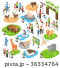 動物園 チーター 荒地のイラスト 36334764