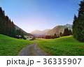 オーストリア オーストリー アルプスの写真 36335907