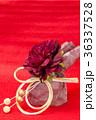 ぼたん 水引 花の写真 36337528