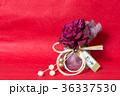 ぼたん 水引 花の写真 36337530