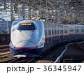 新幹線 電車 乗り物の写真 36345947