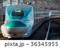 新幹線 電車 乗り物の写真 36345955