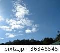 深まった秋の青空と白い雲 36348545