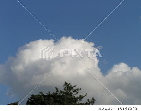 深まった秋の青空と白い雲 36348548