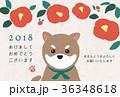 椿と豆柴 年賀状 36348618