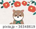 椿と豆柴 年賀状 36348619