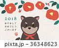 椿と豆柴 年賀状 36348623