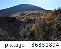 富士山 御庭 紅葉の写真 36351894