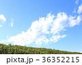 秋 土手 青空の写真 36352215